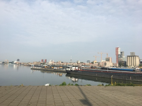 Rotterdam by Day