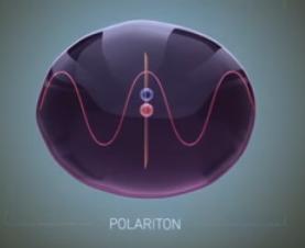 Polariton