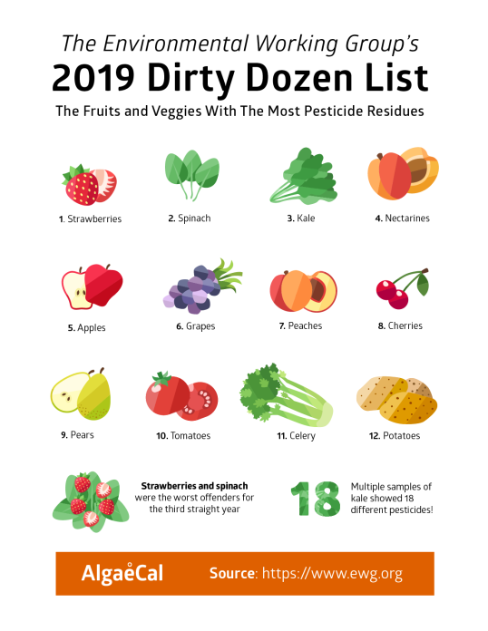 Dirty-Dozen-2019