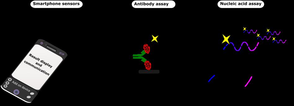 Biosensor principle_
